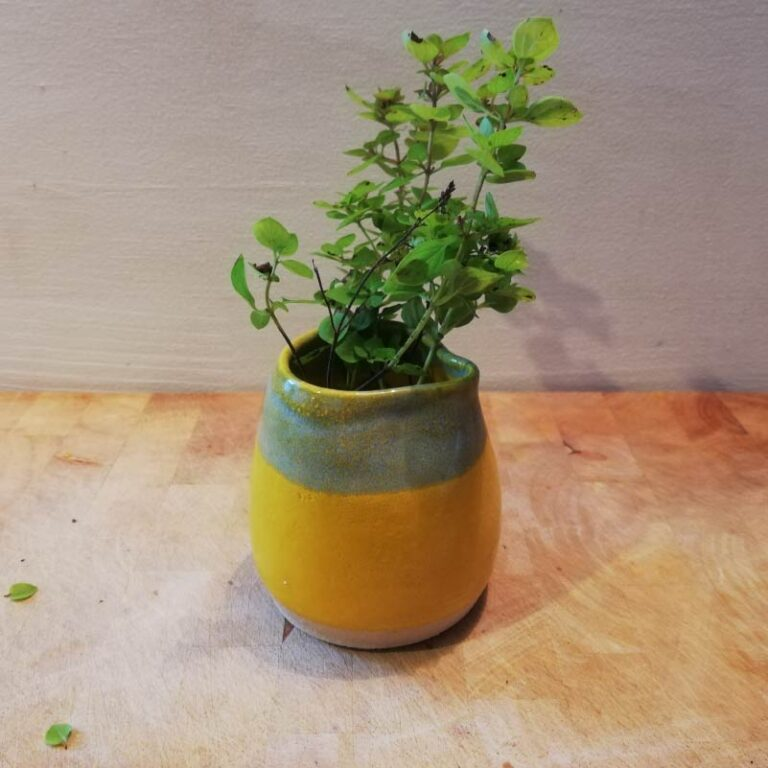 Rosie Pottery_Canary Jug 3